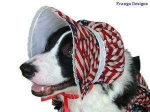 Dogbonnet